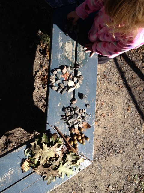 Rock Circles, Leaves, and Acorns