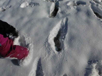 footprint in snow