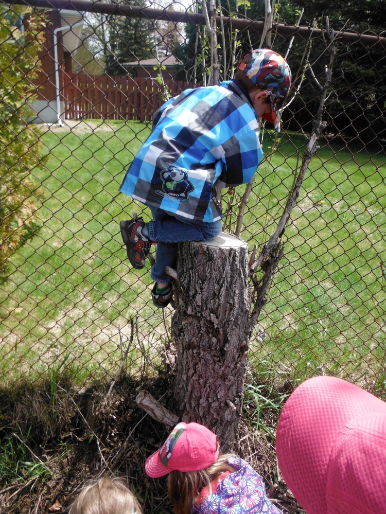boy climbing stump